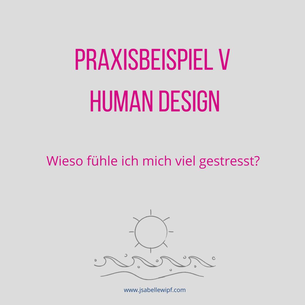Human Design Praxisbeispiel V